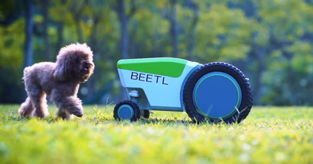 Beetl hondenpoep robot opruimen
